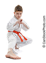 Karate Kid - a young boy doing martial arts moves.