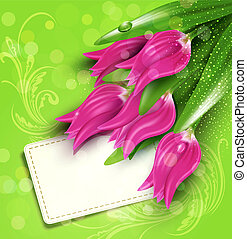 congratulatory background of tulips and card -...