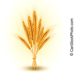 background with a sheaf of golden wheat ears