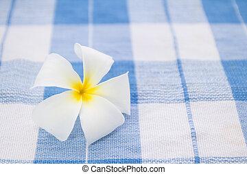White frangipani plumeria flower on blue tablecloth