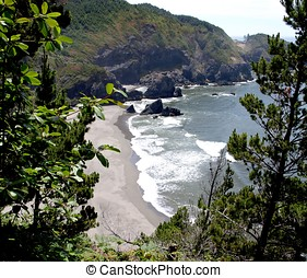 View of Oregon coastline through tr - Rock outcroppings and...