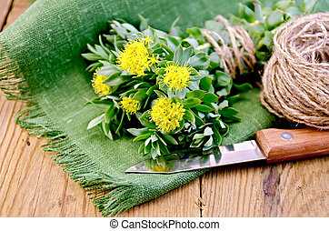 Rhodiola rosea on the board - Rhodiola rosea flowers, tied...