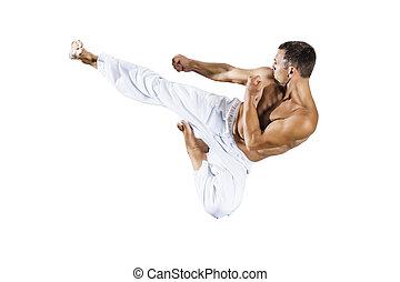 Taekwondo, marcial, artes, maestro