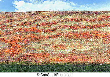 Brick wall texture with grass and sky as background