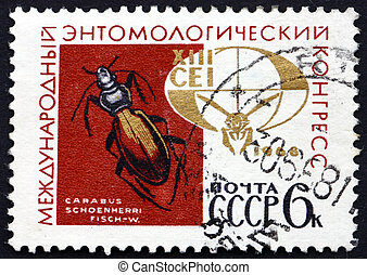 Postage stamp Russia 1968 Ground Beetle - RUSSIA - CIRCA...