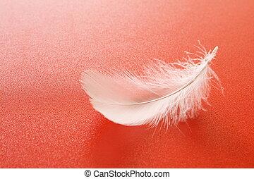 白色, 羽毛