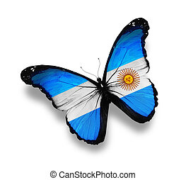 Argentine flag butterfly, isolated on white