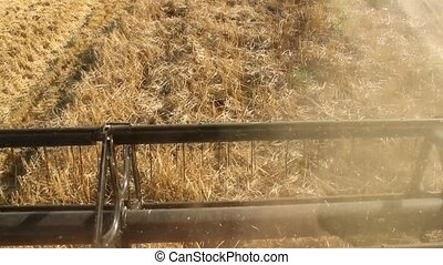 view from the cabine combine - combine work in field in...