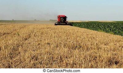 timelapse combine work in field - combine work in field in...