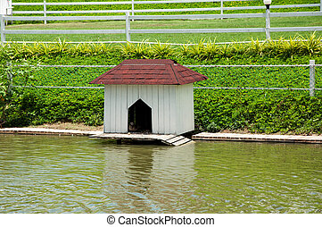 house for the ducks and bird