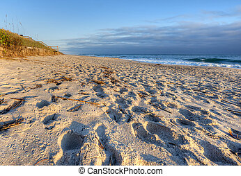 Canaveral National Seashore in the Morning