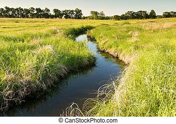 winding creek, Kansas pasture - creek winding through green...