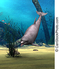 Dolphin - 3D digital render of a cute dolphin on blue...