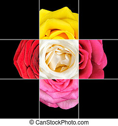 Colorful Rose Flower mosaic design which is consisting of 9...