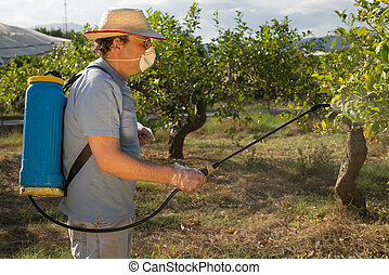 Spraying pesticide - Agricultural worker spraying pesticide...