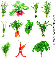 Fresh herbs and vegetable collection isolated on white...