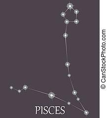 Pisces Zodiac sign. Vector