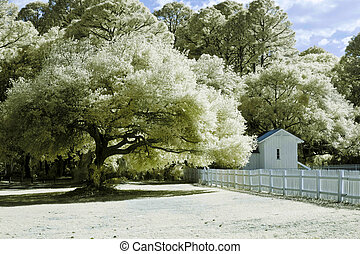 infrared landscape photo - infrared photo of forest, house,...