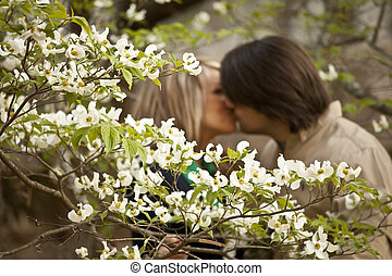 dogwood with couple kissing - dogwood blossoms in foreground...