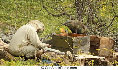 Spring works on an apiary beekeeping
