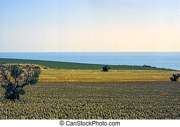 Conero Marches, Italy - Riviera del Conero Ancona, Marches,...
