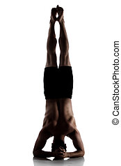 Adult male dancer - Silhouette of an muscular adult male...