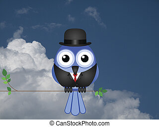 Comical Businessman bird sat on a tree branch against a...