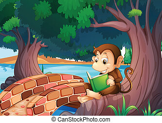 A monkey reading a book under the big tree near the bridge -...