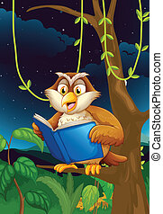 An owl reading - Illustration of an owl reading