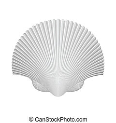 Scallop Shell. Isolated On White. Vector Illustration