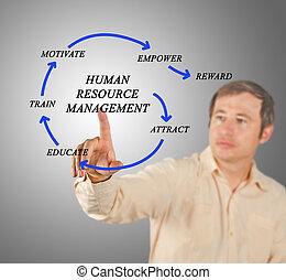humano, recurso, dirección
