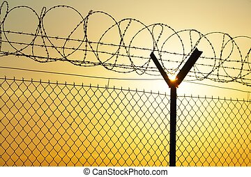 Barbed wire - Fence covered with barbed razor wire.