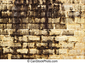 Old Brick walls background and texture