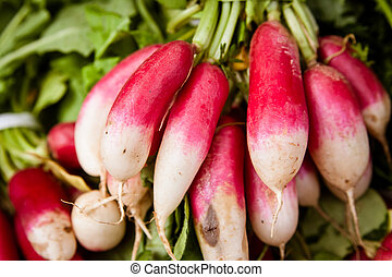 Bunch of root vegetables. - Close up view of root vegetables...