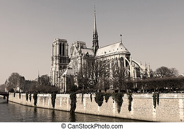 Notre Dame cathedral in the center of Paris, France (sepia...