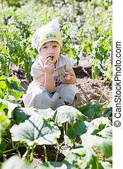 mangia, cetrioli, anni,  2, bambino, ragazza