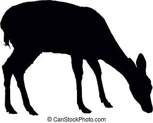 Fawn - Pasturing little fawn, black vector silhouette