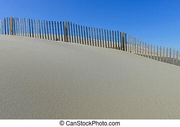 beach with sand dune