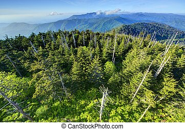 Smoky Mountains - View from the observation deck of...