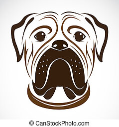 Vector image of an dog bulldog on white background
