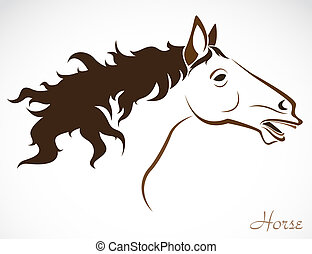 Vector image of an horse - Vector head of horse on a white...