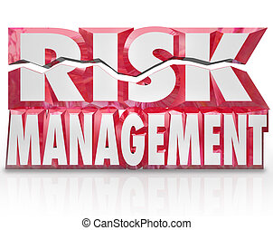 Risk Management 3d Words Reducing Danger Minimize Liability...