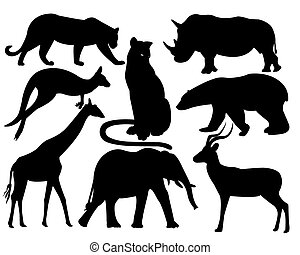 wildlife animals on a white background
