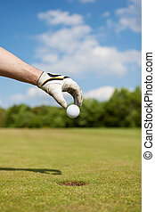 golfer putting golf ball by hand in the hole