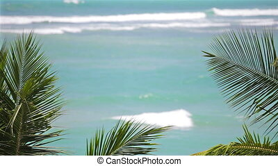 Waves on tropical beach with palms