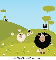 sheeps - black and white sheeps on special background