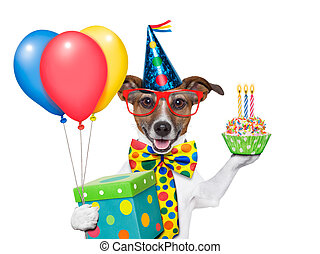 birthday dog with balloons and a cupcake