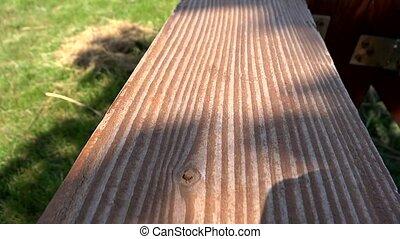 leaf shadows on wood