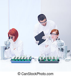 students working in chemistry lab - close-up of a teacher in...