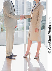 Business team shaking hands in a bright office